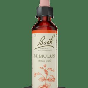 Mimulus N.20- 20ml