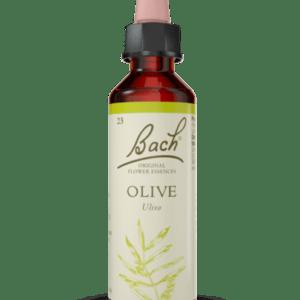 Olive N.23- 20ml