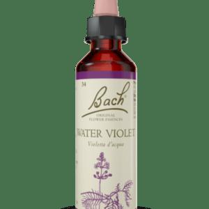 Water Violet N.34 - 20ml