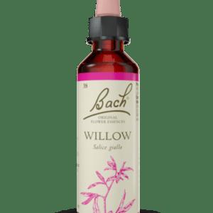 Willow N.38 - 20ml