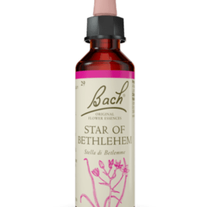 Star of Bethlehem N.29 - 20ml